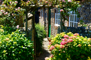 3 Tips for a beautiful garden all year round
